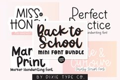 MINI FONT BUNDLE - Back To School Font Bundle Product Image 1