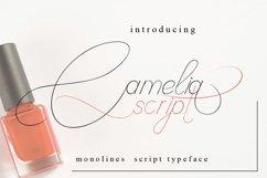 Camelia Script Product Image 1