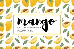Mango hand drawn illustrations Product Image 1