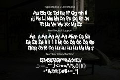 Web Font Erasmus Font Product Image 3