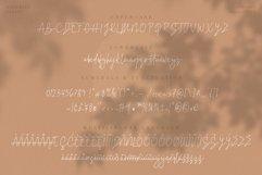 Baggelen - Stylish Signature Fonts Product Image 5