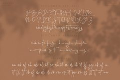 Baggelen - Stylish Signature Fonts Product Image 6