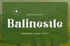 Web Font Balinestle Product Image 1
