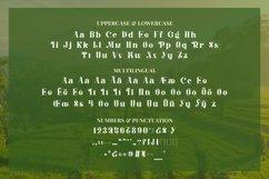 Web Font Balinestle Product Image 4