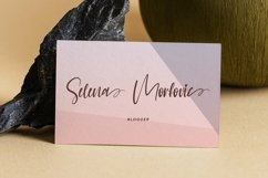 Web Font Ballerina - Handwritten Font with Swash Product Image 3