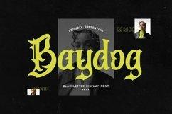 Web Font Baydog Product Image 1