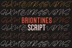 Briontines Signature Font Product Image 2
