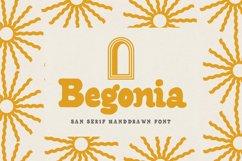 Begonia - Sans Serif Product Image 1