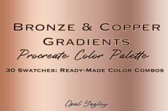 Bronze & Copper Procreate Metallic Color Palette Product Image 1