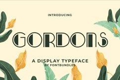 Gordons Product Image 1
