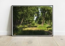 Path in the forest - Wall Art - Digital Print - Home Decor Product Image 4