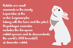 Bunny Funny   Playfull Font Product Image 3