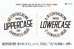 Quente Script & Tamigos Product Image 6