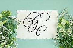 Web Font Swirly Letters - Monogram Font Product Image 4