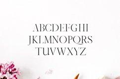Jaavon Serif Font Family Product Image 2