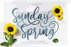 Sunday Spring - Chic Brush Font Product Image 1