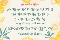 Better Summer Script Product Image 6