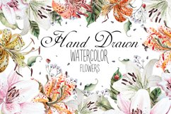 Hand Drawn watercolor flowers lily Product Image 6