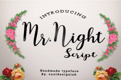 Mr.Night script Product Image 1