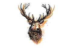 Deer splash of watercolor logo vector Product Image 1