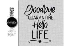 Covid Free, Goodbye Quarantine Shirt SVG, Friend Product Image 2