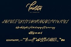Web Font Trinitii - Modern Calligraphic Font Product Image 6