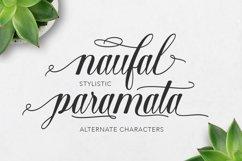 Shantea Script Product Image 3