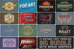 Big Bundle - 14 more fonts! Product Image 1
