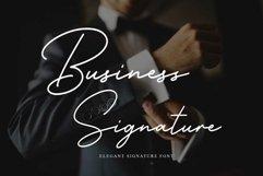 Business Signature - Elegant Script Font Product Image 1