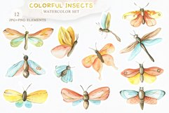 Watercolor Set Colorful Insects Product Image 2