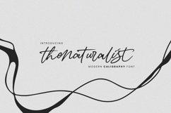 Thenaturalist Caligraphy Wedding Font Product Image 1