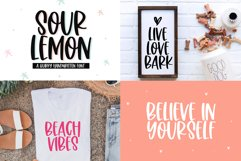 Spring Font Bundle - Fonts for Crafters Product Image 13