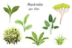 Australian Animals Product Image 6
