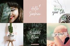 River Jade, signature font script, logos & bonus clipart Product Image 2
