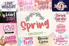 BIG BUNDLE - Seasonal Crafting Font Collection!! Product Image 2