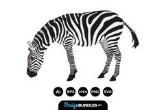 Zebra Clipart Product Image 1