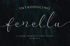 Web Font Fenella - Luxury Romantic Font Product Image 1