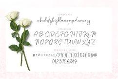 Saodah - Beautiful Signature Typeface Product Image 3