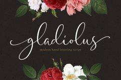 Gladiolus - Modern Calligraphy Product Image 1