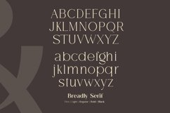 Breadley Serif Product Image 6