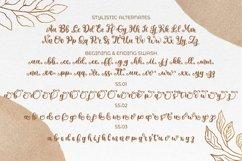 Metafora   Fancy Calligraphy Product Image 5