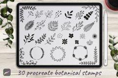 Set of 30 Botanical Stamp Brushes for Procreate Product Image 1