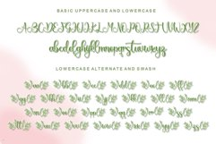 Springbee - Modern Calligraphy Product Image 10