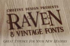 Raven Typeface Product Image 4