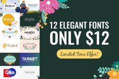 12 Elegant Fonts Only $12 Product Image 1