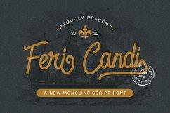 Feri Candi - Monoline Script Font Product Image 1