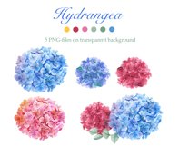 Watercolor Peonies and Blue and Pink Hydrangea Product Image 3