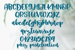 Lovely Willow - A Hand-Lettered Script Font Product Image 5
