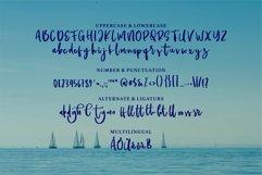 Railon - A Beauty Script Font Product Image 5