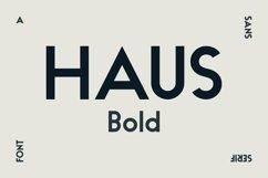 HAUS Sans Bold Product Image 1